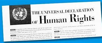 Bildresultat för FN mänskliga rättigheter