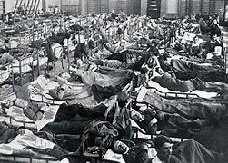 Bildresultat för spanska sjukan